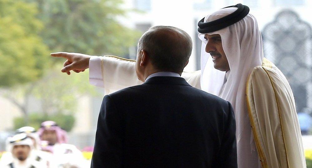"""موقع سويدي ينشر وثائق لـ """"اتفاقية عسكرية سرية"""" بين قطر وتركيا"""