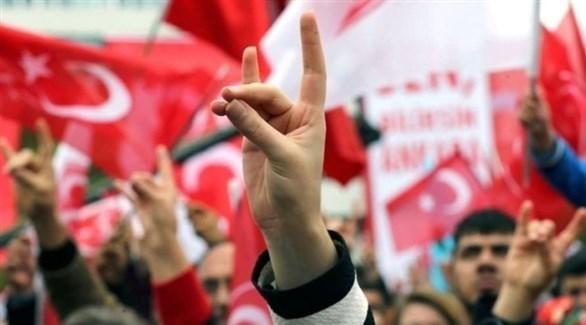 بعد ألمانيا وفرنسا... هولندا تستعد لحظر الذئاب الرمادية التركية