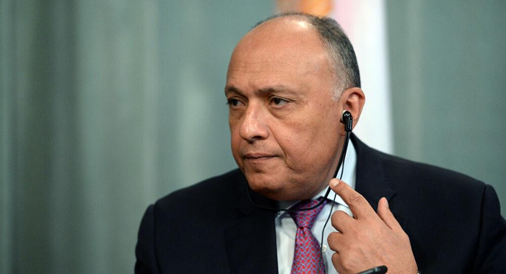 وزير الخارجية المصري: تركيا تجند وتنقل آلاف المقاتلين الأجانب من سوريا إلى ليبيا