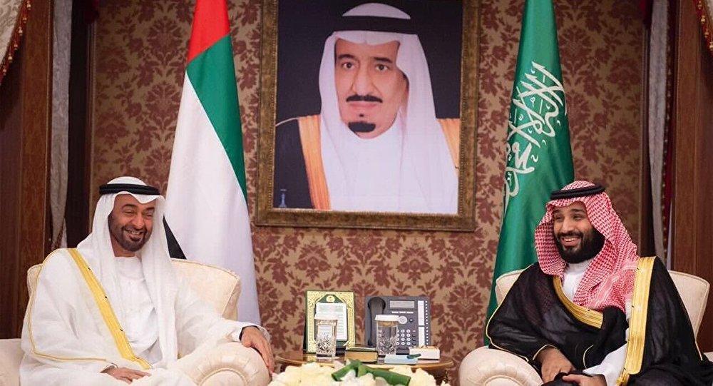 قرقاش: التحالف السعودي الإماراتي ثابت ولقاءات الأخوة مستمرة