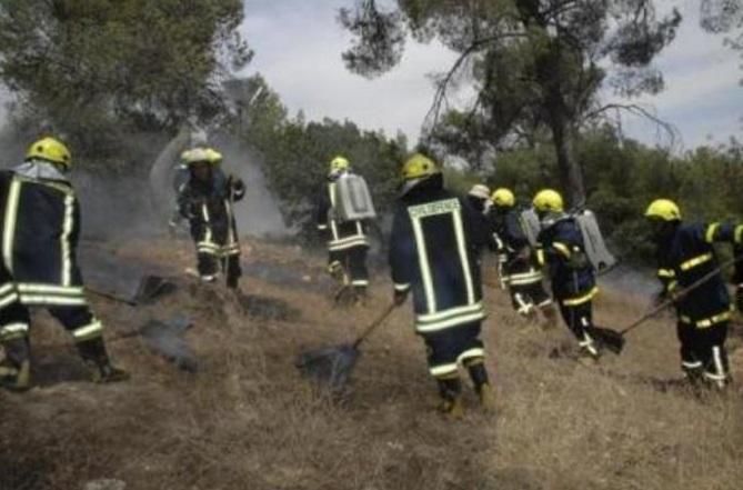 الدفاع المدني يخمد حريق أعشاب جافة وأشجار حرجية في جرش