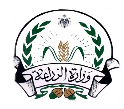 """""""الزراعة الأردنية"""": لا صحة لوجود الجراد في الاردن"""