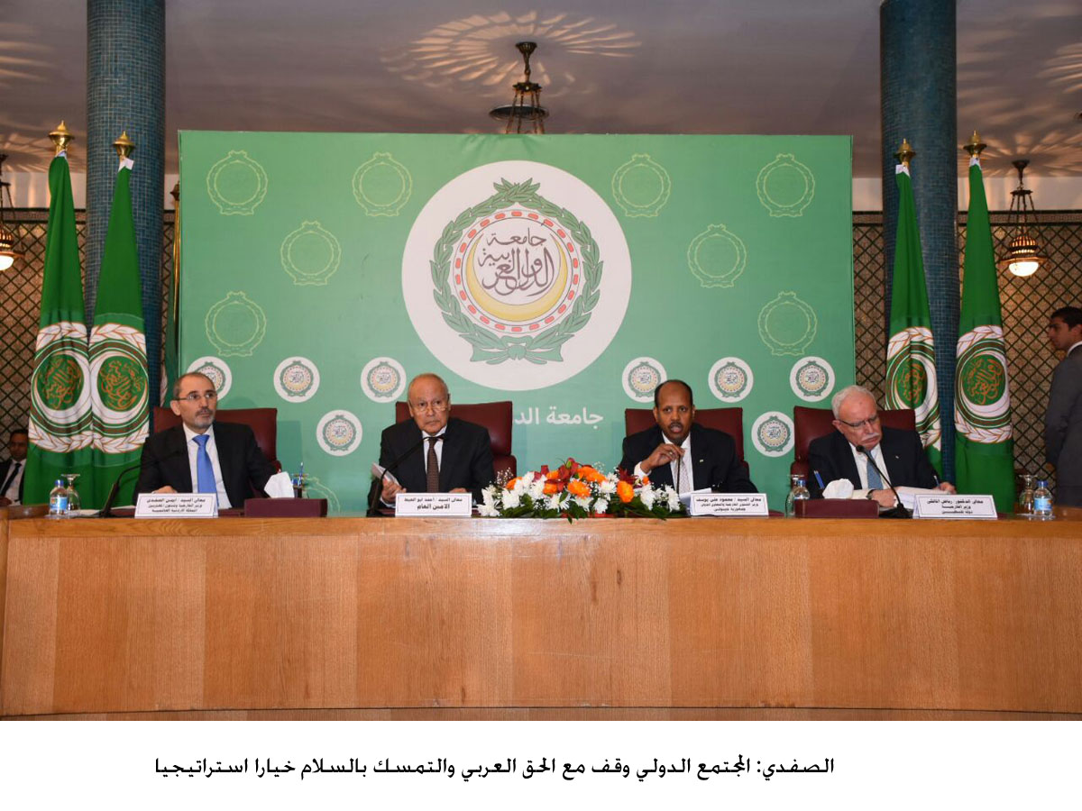 الصفدي: المجتمع الدولي وقف مع الحق العربي والتمسك بالسلام خيارا استراتيجيا