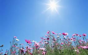 ارتفاع ملموس على الحرارة اليوم وغدا