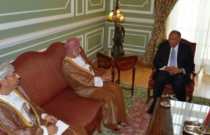 مصر وعمان تبحثان تعزيز التعاون في المجال الدفاعي