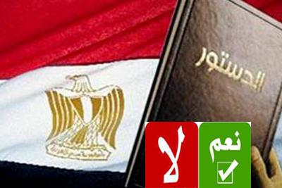 الاسلاميون يعلنون حصول الدستور على تأييد غالبية المصريين
